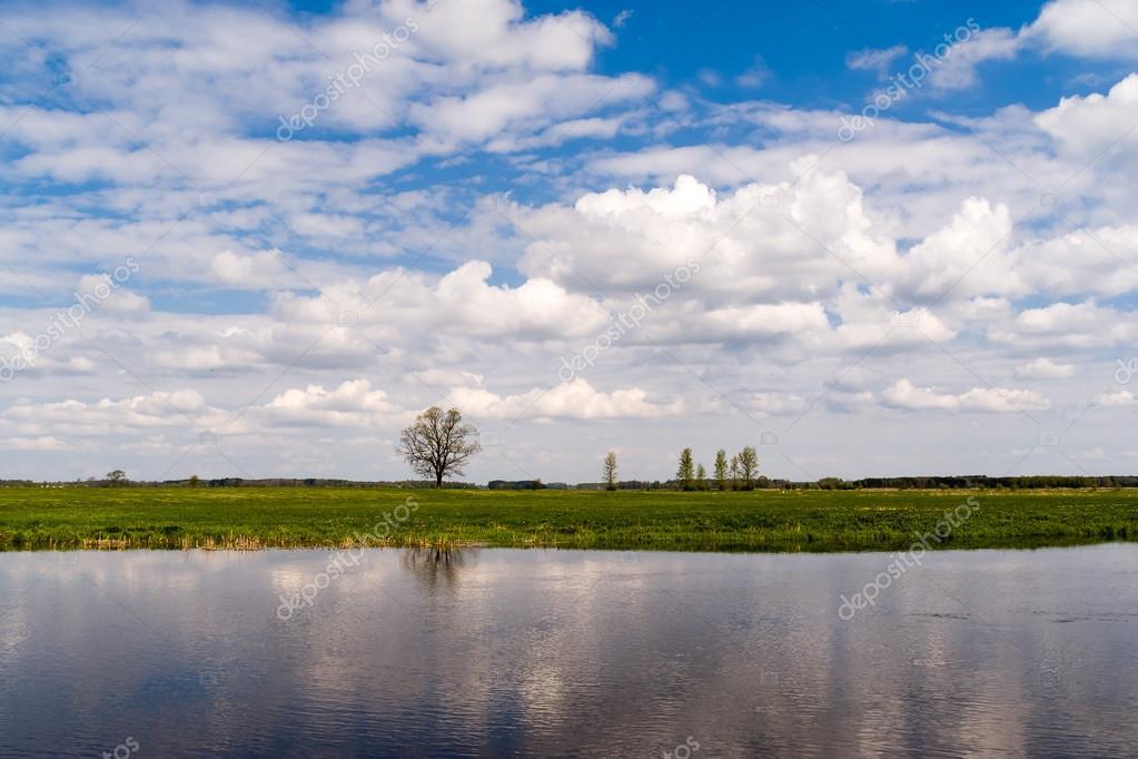 Фотообои Rzeka Narew - Podlasie