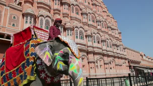 Ceremonial decorated Elephant outside the Hawa Mahal