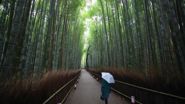 Bamboo Forest, Sagano
