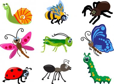 Set of different types of insects isolated on white background in flat style. Vector illustration.
