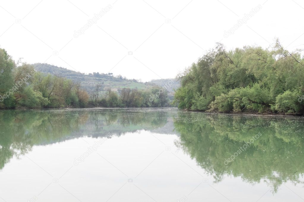 Tiber river photographed from the bottom of water level