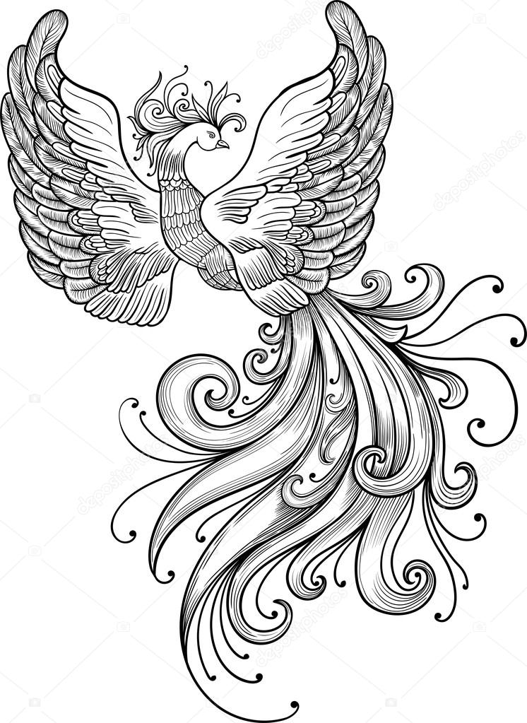 https://st2.depositphotos.com/8001674/10819/v/950/depositphotos_108198036-stock-illustration-firebird-vector-clipart.jpg