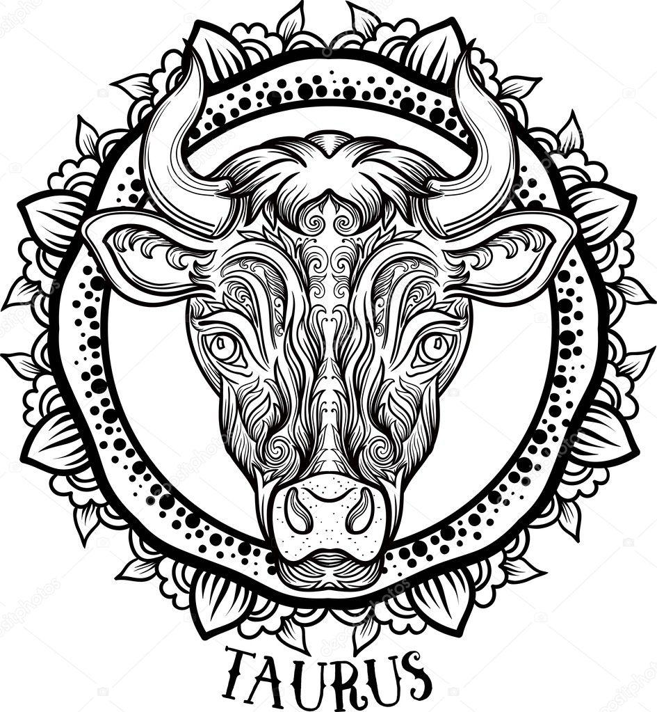Detailed Taurus Aztec Filigree Line Art Zentangle Style