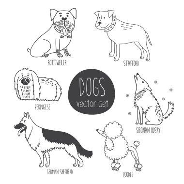 cartoon dos of different breeds