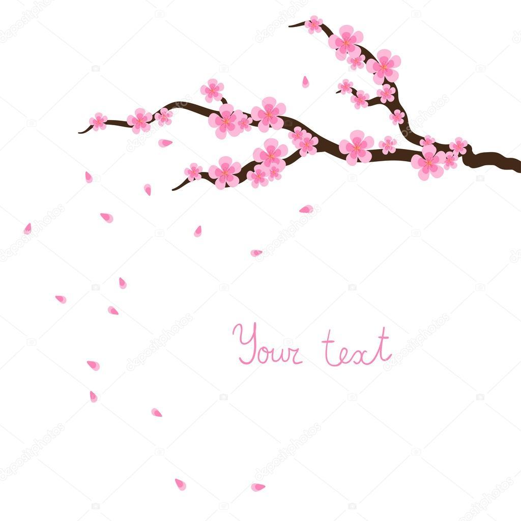 Ветка сакуры фото картинка  pic2me