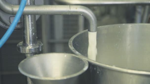 Fülltank ein Strahl Milch für die Pasteurisierung aus nächster Nähe.