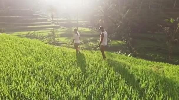 holky, chůze ve velké na rýži
