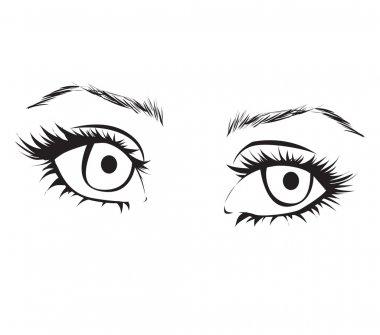 Female eyes outline.