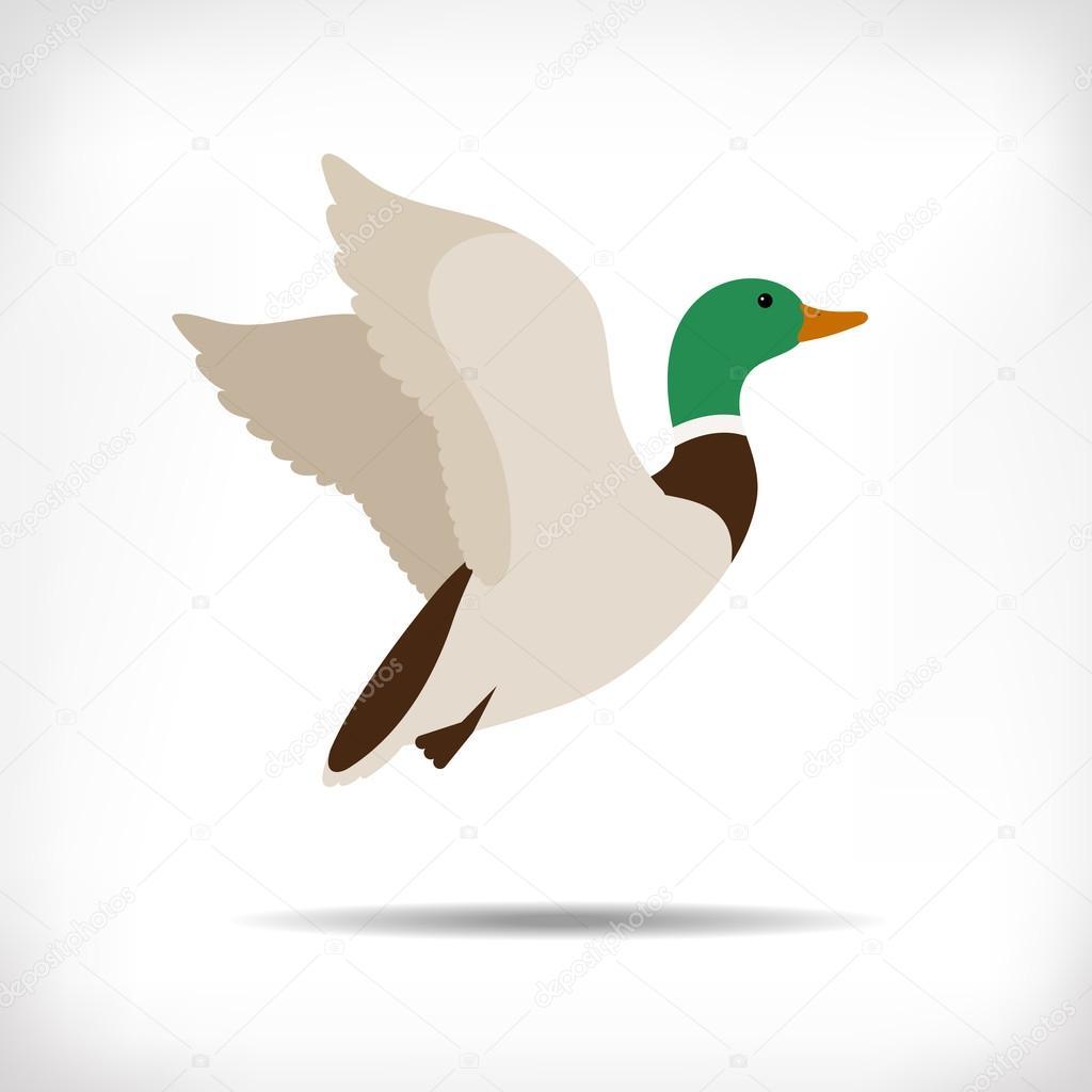 Vecteur de canard volant vol de canard colvert ic ne de - Illustration canard ...