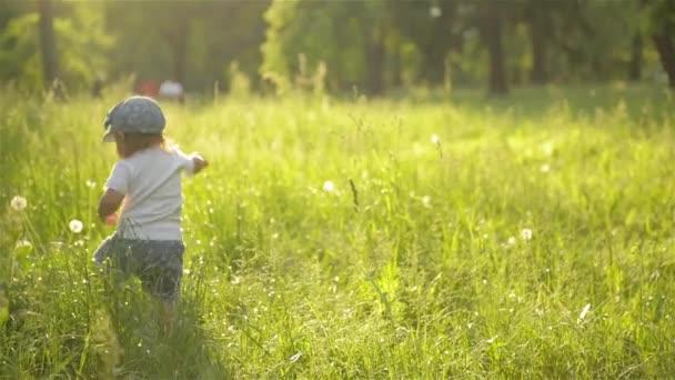 Rozkošná holčička, která chodí v krásné letní zahradě, teplý slunný den