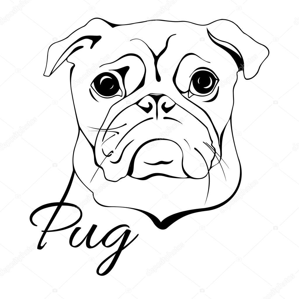 Pug perro cabeza — Archivo Imágenes Vectoriales © irkasmorodina8 ...