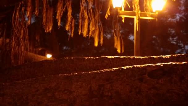 Banyan tree noc kufru