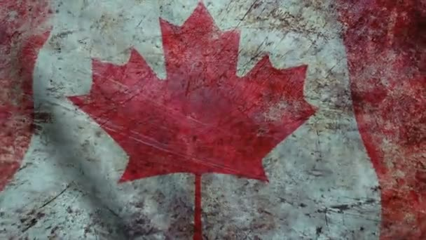 Realistic Ultra-HD flag of the Canada waving in the wind. Seamless loop with highly detailed fabric texture