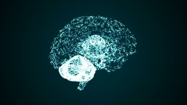Animated brain formed from points