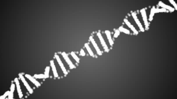 Animált DNS-lánc. Rotációs DNS