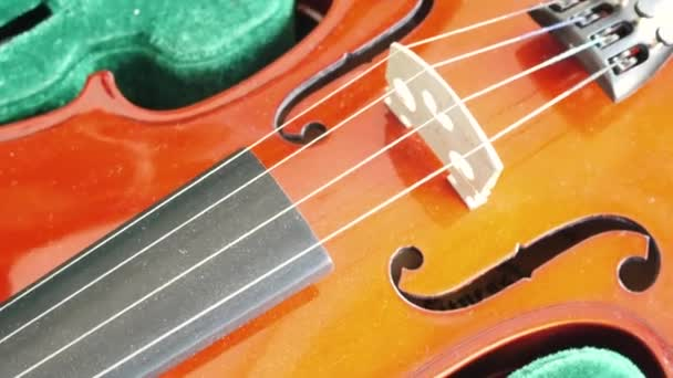 Close-up of musician playing violin, classic music