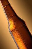 Láhev vychlazeného piva. Čerstvé pivo láhev koncept.
