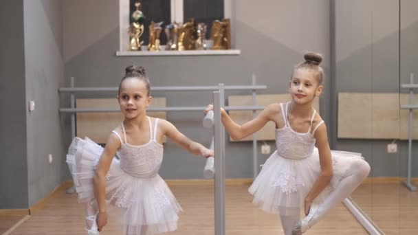 Young ballerinas in pretty dresses practicing in a studio