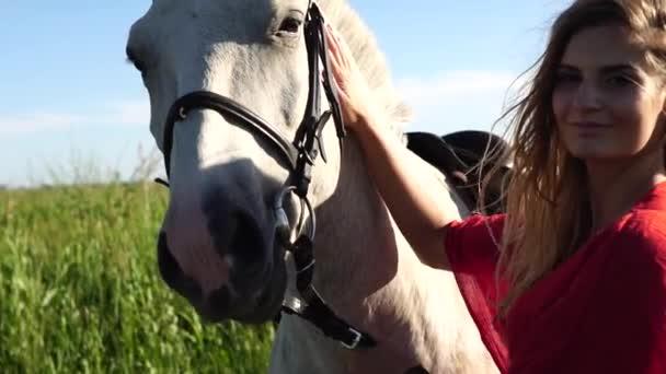 Porträt einer jungen schönen Frau in rot mit einem weißen Pferd in der Nähe des Feldes