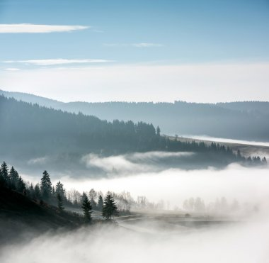 Foggy Landscape in Mountains.