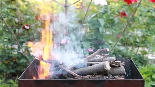 Spalování dřeva v pánev. Oheň, plameny. Gril nebo grilovat