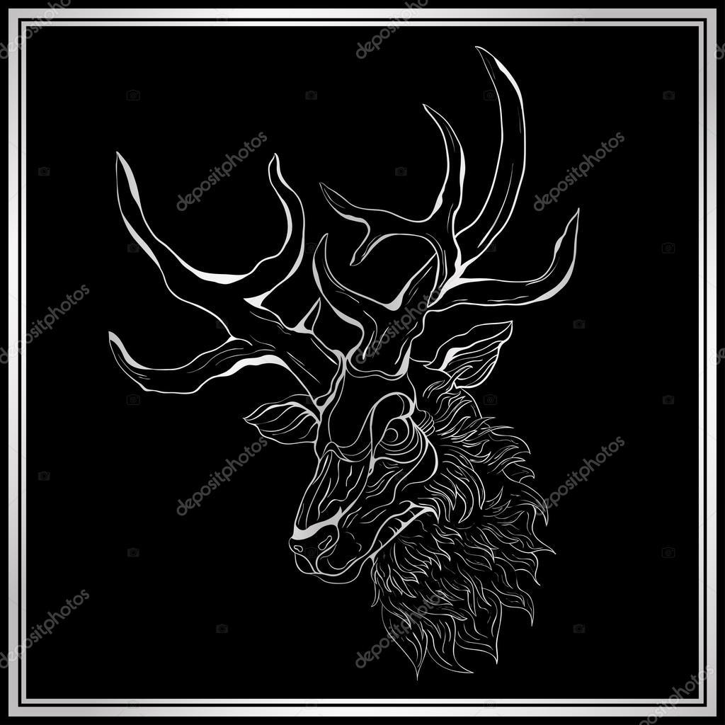 Disegni Cervo Bianco E Nero Cervo Bianco Su Sfondo Nero