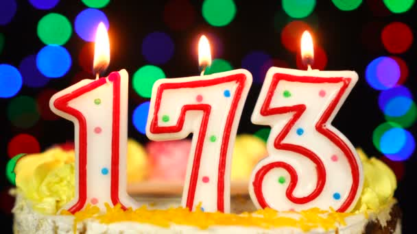 Number 173 Happy Birthday Cake With Burning Candles Topper.