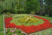 Květinové hodiny v parku, Poděbrady, Česká republika