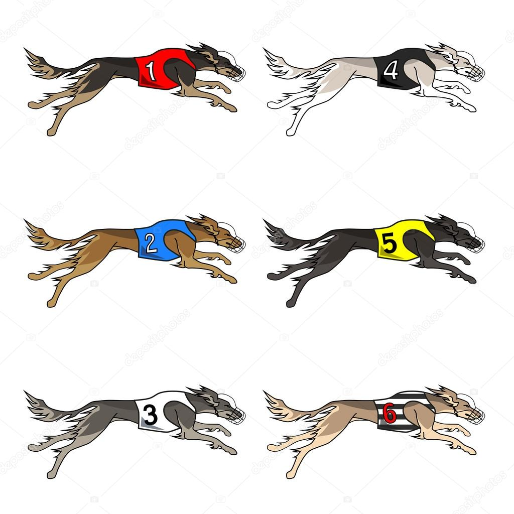 Set of running dog saluki breed — Stock Vector © annett net@gmail