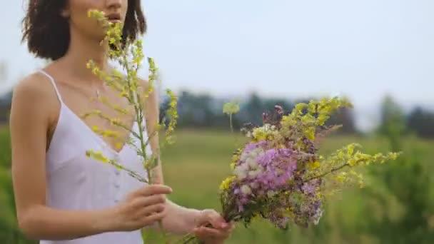Nyáron virágzó mező és egy gyönyörű lány, egy fehér sundress