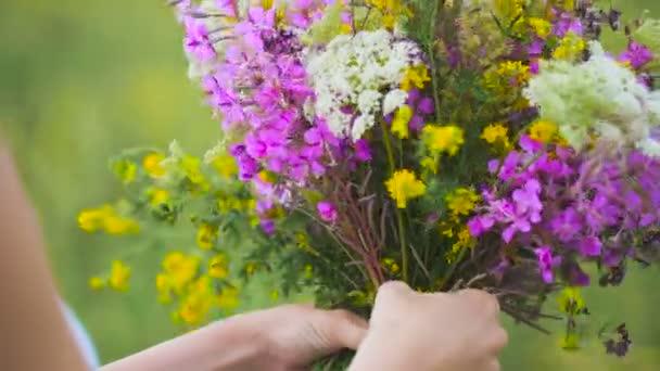V létě kvetoucí pole a krásná dívka v bílé letní šaty.