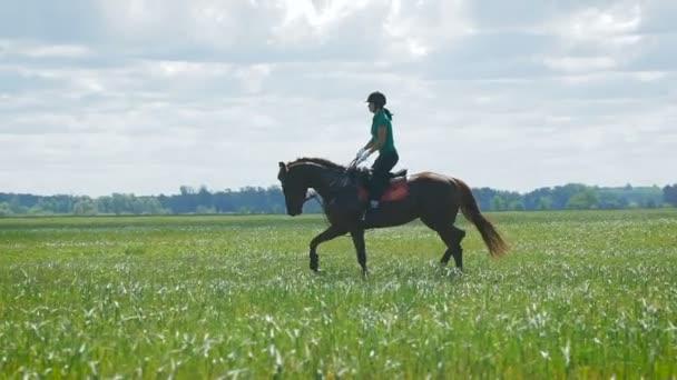Krásná dívka na koni na venkově.