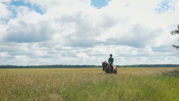 schönes Mädchen, das ein Pferd in der Landschaft reitet. ein wunderschönes Pferd kommt vor die Kamera