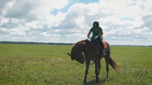 eine junge schöne Frau auf einem Pferd auf einem Feld. Dame umarmt ein Pferd