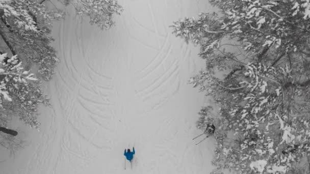 Horní pohled. Sportovní muž se věnuje běžeckému lyžování v zimním lese.