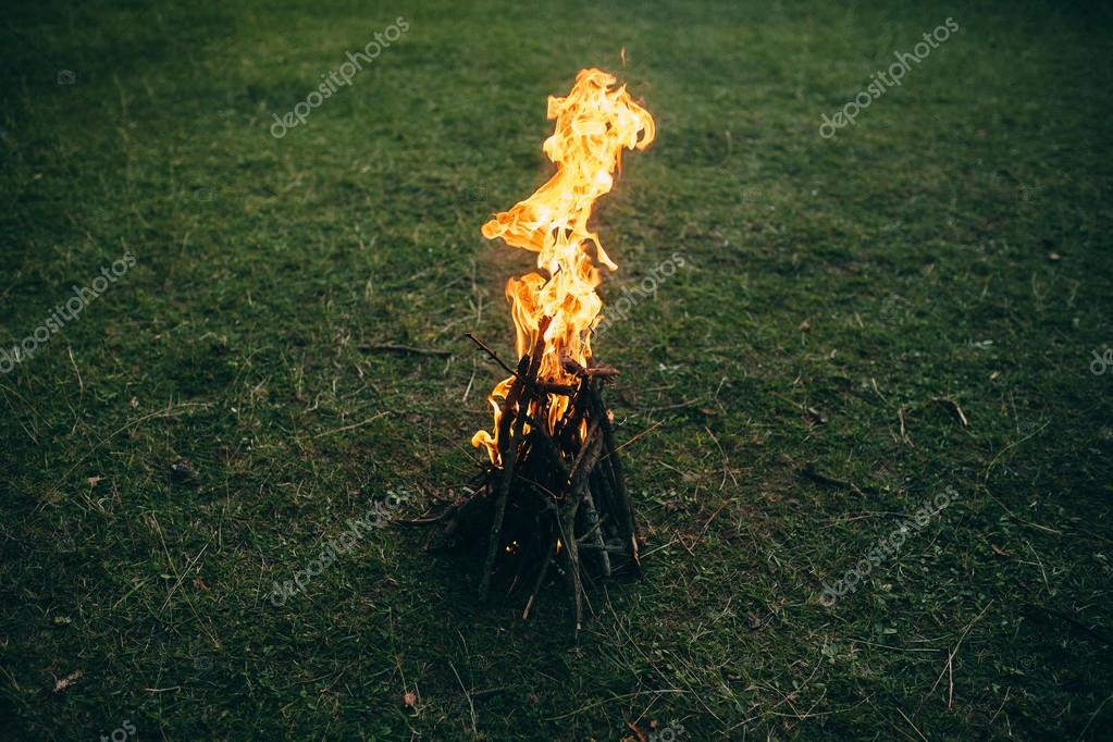 Burning campfire on meadow