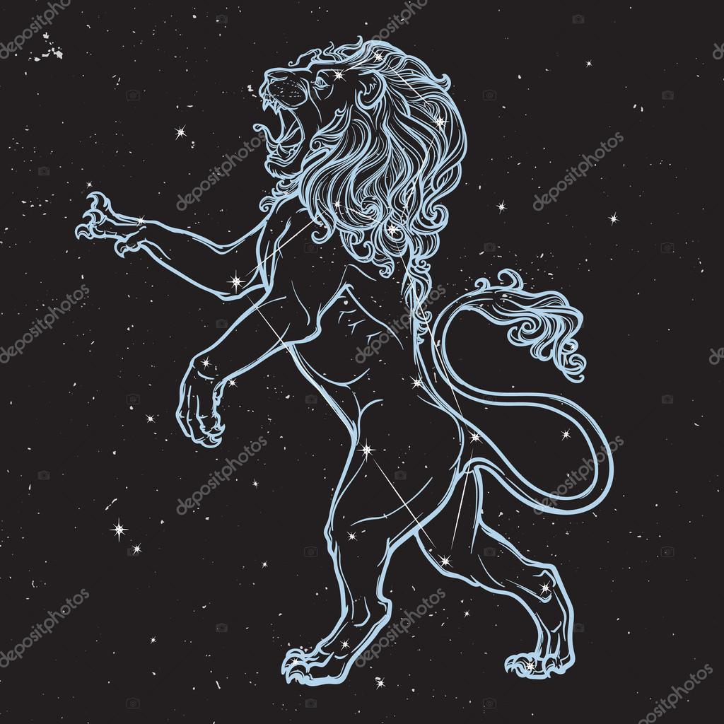 Sketch drawing of rearing lion isolated on nightsky background.