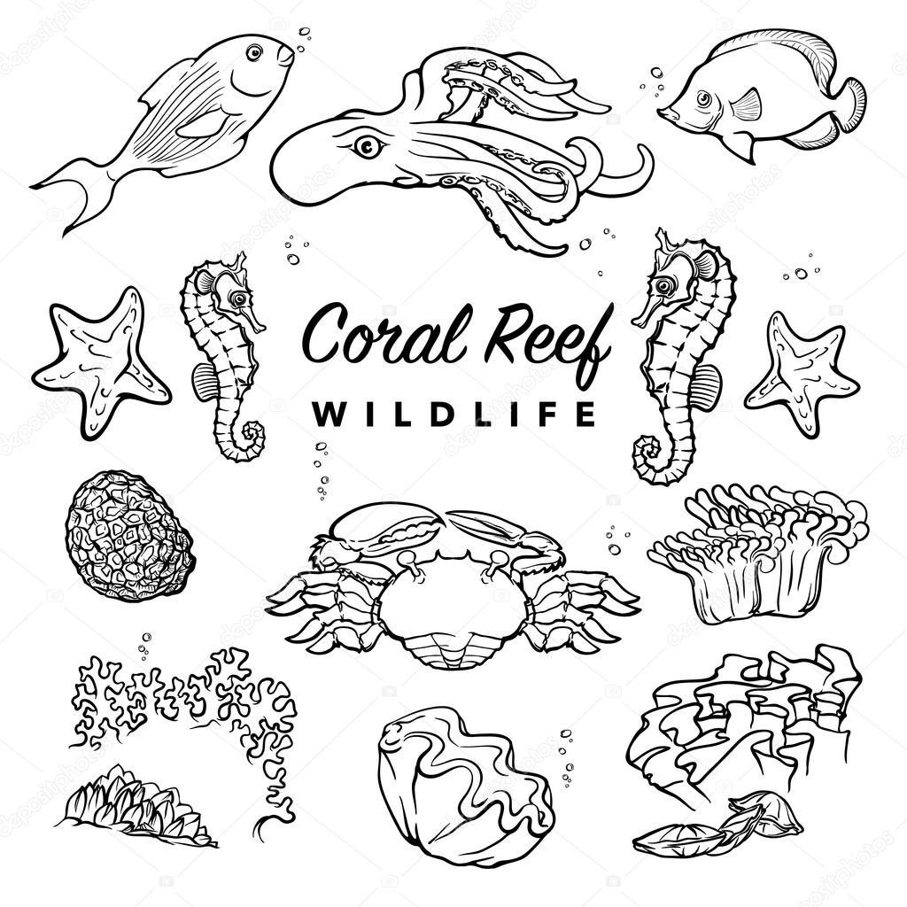 Conjunto de criaturas del mar. BW — Archivo Imágenes Vectoriales ...