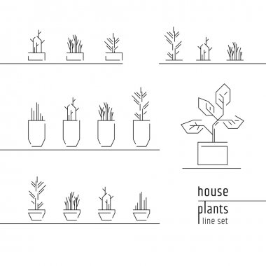 House plants icons