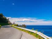 coastal road between nature in the Basque country