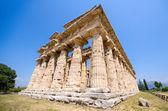 Fotografia Tempio di Segesta