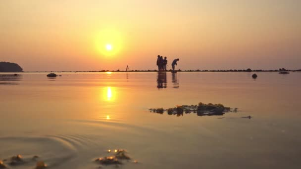 Seestern krabbeln bei Sonnenuntergang vom Riff am Naiyang Strand Puket Thailand.