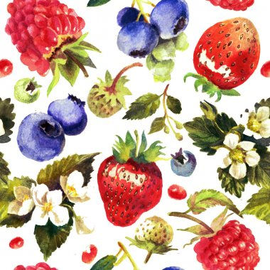 Berries isolated on white background. Watercolor painting, pattern, print
