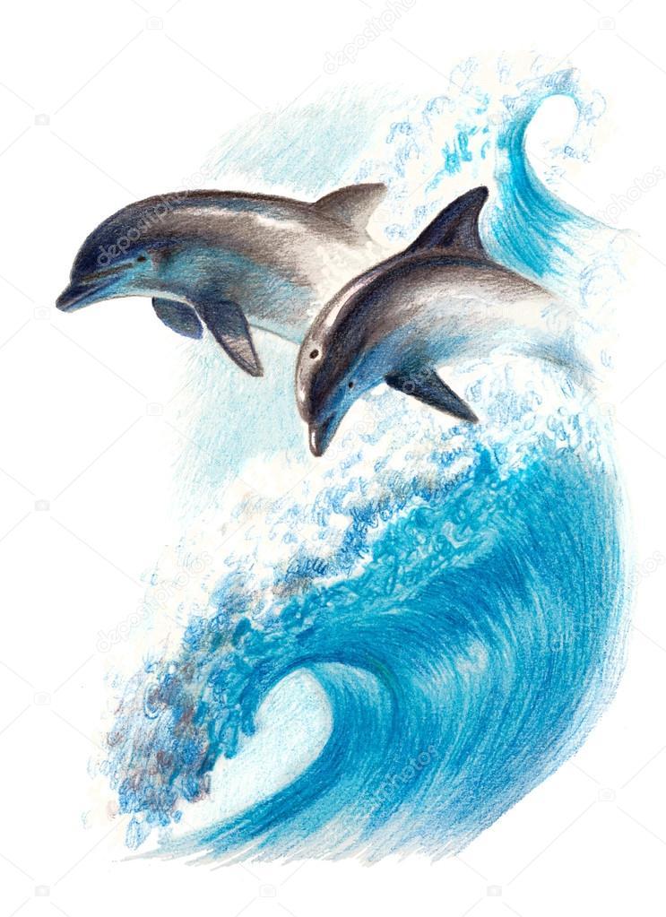 Dessin de couleur deux dauphins sur une vague crayons - Dauphin dessin couleur ...