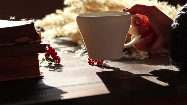 Žena ruce hrubý šedý svetr drží horkou kávu v bílém šálku kouřící na dřevěném stole slunečný den. Soustřeď se na ruce. Pampelišková semínka létají. Podzimní listy, červené bobule, podzimní flurry byliny pozadí.