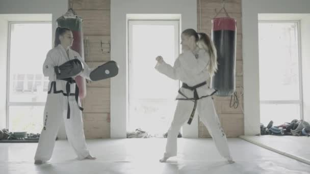 Two Taekwondo Girls Train For A Kick On Boxing Paw