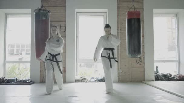 Dvě Taekwondo dívky vlak pro kop