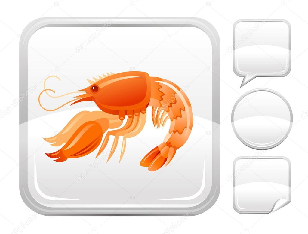 Sea beach and travel icon with shrimp seafood on square background and other blank button forms - speaking bubble, circle, sticker
