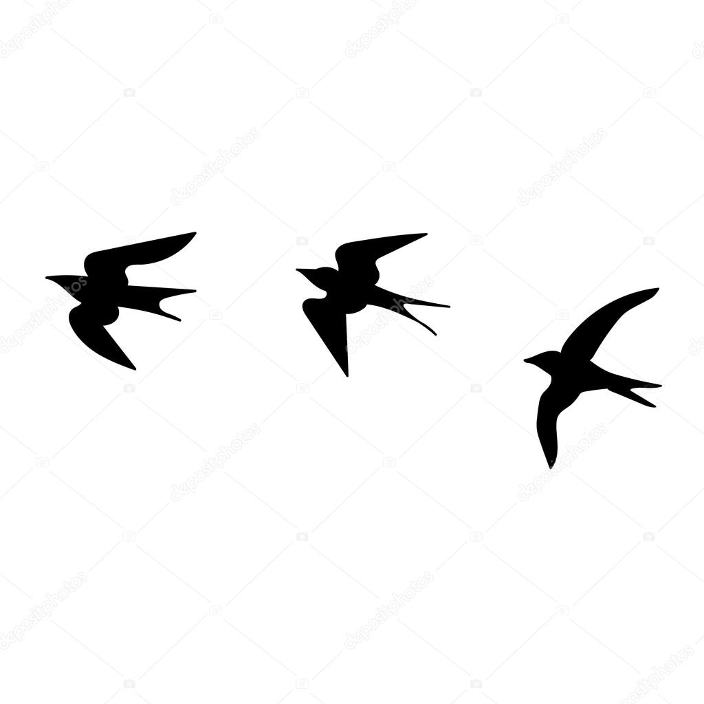 Hirondelles De Dessin Animé Noir Image Vectorielle Lovedoves
