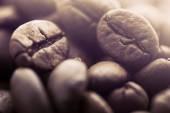 macro di chicchi di caffè
